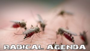 Radical Agenda S04E051 - Sterile