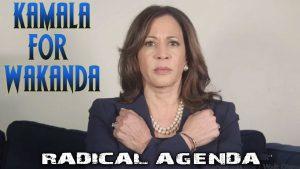 Radical Agenda S05E009 - Wakanda Martyr Brigades